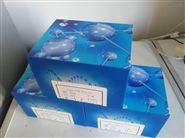人干扰素调节因子3(IRF3检测试剂盒)Elisa北京