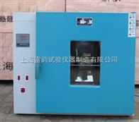 101-1AB101a电热鼓风干燥箱*上海雷韵