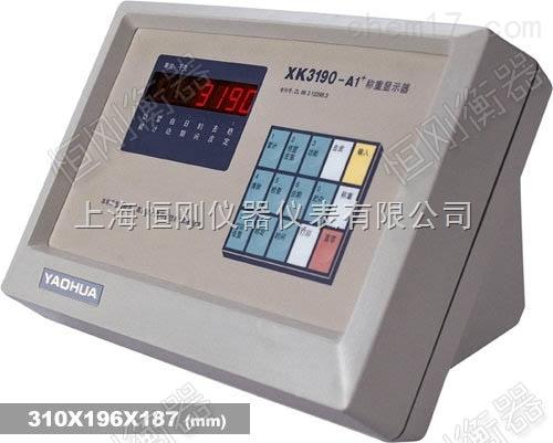 带打印的称重显示仪,数字式称重电子仪