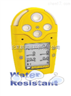 加拿大BW GasAlertMicro5多种气体探测仪
