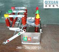 10KV不锈钢开关ZW8-12/630电动真空断路器
