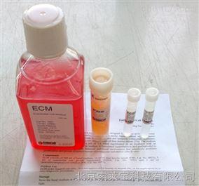 sciencell  内皮细胞培养基(ECM)