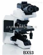 BX53研究级生物显微镜