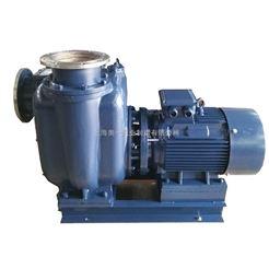 AYZS工業自吸泵
