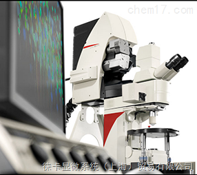 德国徕卡 TCS SP8 MP 多光子共聚焦显微镜