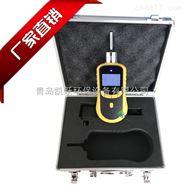 车间泵吸式臭氧浓度检测仪