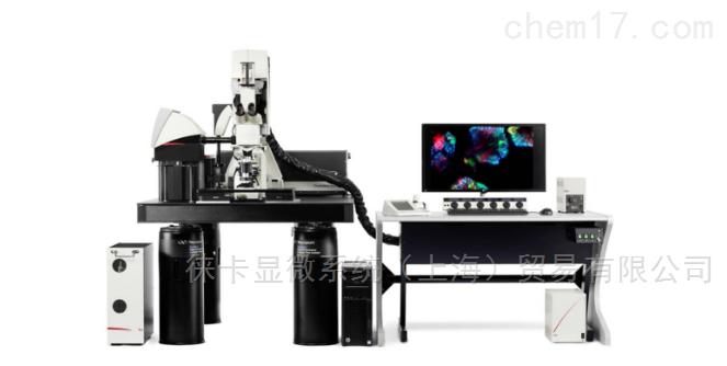 德國徠卡 TCS SP8 DIVE 激光共聚焦顯微鏡