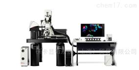 TCS SP8 DIVE德国徕卡 TCS SP8 DIVE 激光共聚焦显微镜