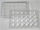 24孔细胞培养板