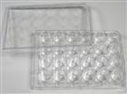 Eaivelly细胞培养板