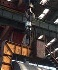 电子50吨吊磅