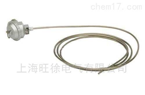 WRN-K-187铠装热电偶