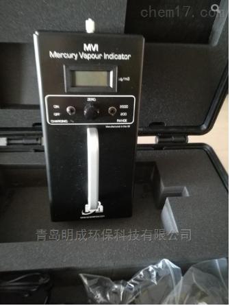 英离子MVI汞蒸汽检测仪进口现货