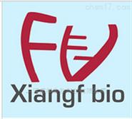 CFPAC-1 人胰腺癌细胞