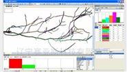 根系图像分析仪