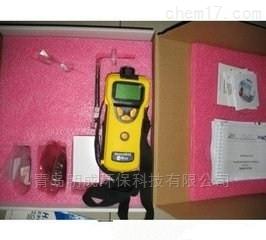 美华瑞可燃气有毒气体检测仪PGM-1600