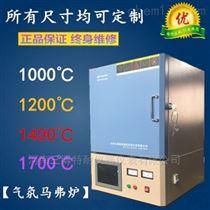 TN-M1000Q氣氛馬弗爐