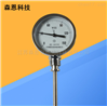 抽芯式不锈钢双金属温度表