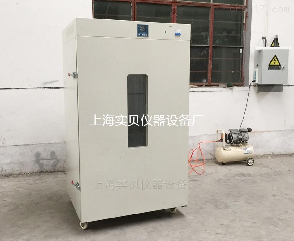 电热鼓风干燥箱DHG9620
