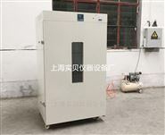 電熱鼓風干燥箱DHG9620