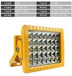 BDE516-100w防爆LED道路照明灯工厂
