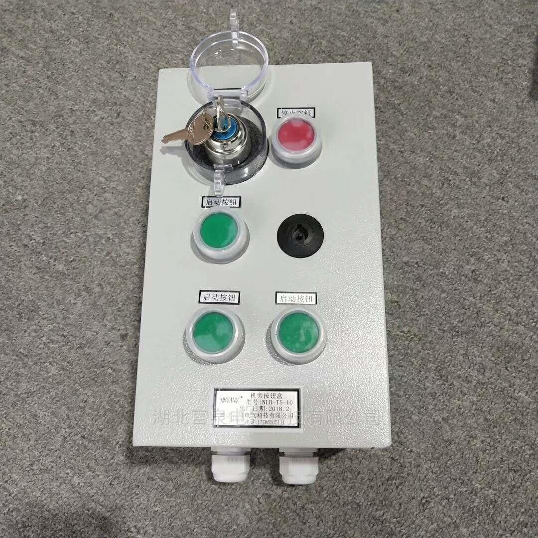 NLB-T5-10电机厂户外防水按钮成套操作箱