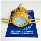 BLD210化工視鏡燈聚光探照燈LED10W20W
