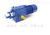 Bauer单轨减速电机BM40-07V/D09LA4-TF-K