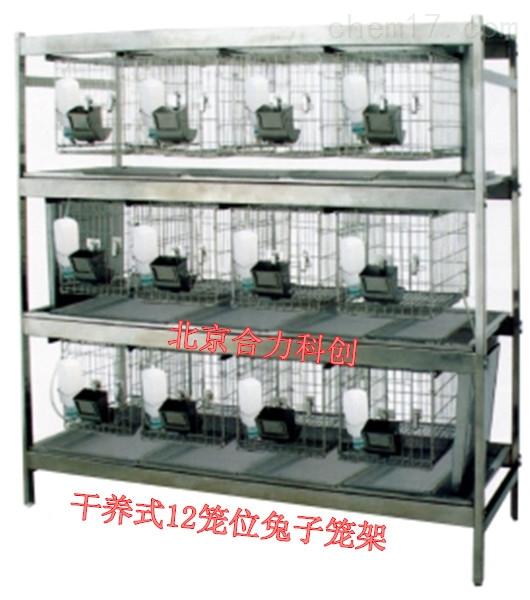 兔子笼架  12位笼位 干养式