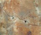 濮阳岩石胀裂剂,濮阳无声破碎剂生产销售专营