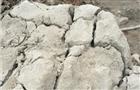 黃石靜力破碎劑 黃石無聲膨脹劑 黃石裂石劑廠家批發