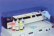线性染色机