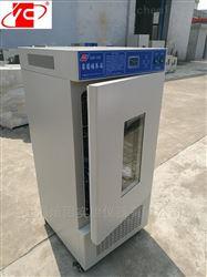 MJP-250MJP-250霉菌培养箱(250L)
