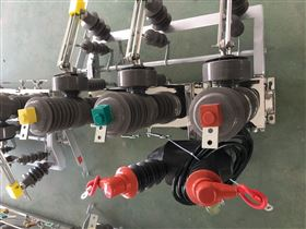 HZW32-12/630HZW32-12/630雙回路10KV線路高壓雙電源開關