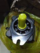 德国Rexroth力士乐PGF2-2X/006RL20VM齿轮泵