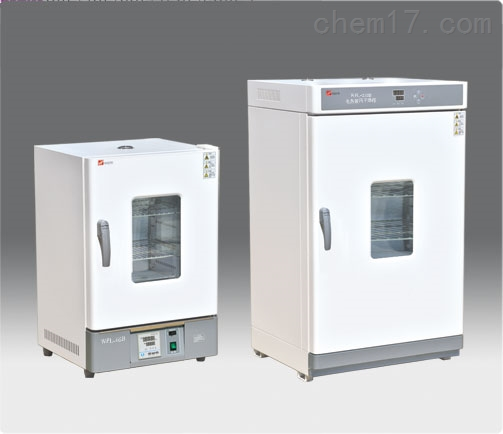 潍坊实验仪器-电热恒温培养箱