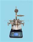 TGYF-B系列微型台式磁力搅拌高压反应釜