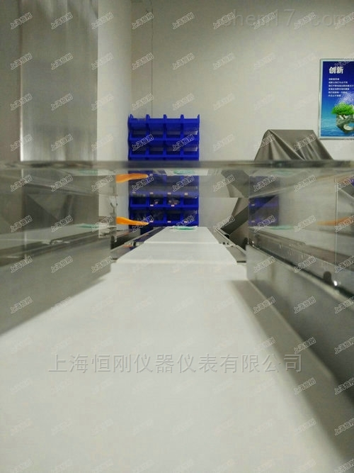 碳钢定制智能检测秤,罐头分选检重秤