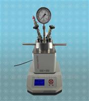 micro-reactor快开系列磁力搅拌反应釜