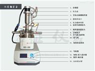 YZPR-100小型反应釜价格