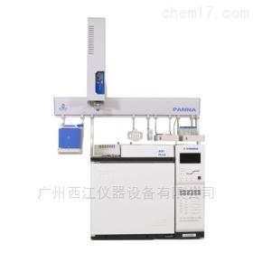 A91PULS气相色谱仪