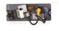 079850079850美国热电Dionex电化学惯例电极