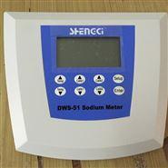 DWS-51钠离子浓度计(污水处理厂水质监测)