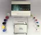 48T 96T小鼠P选择素(P-Selectin/CD62P)ELISA定量试剂盒说明书