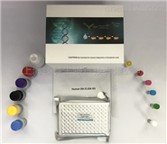 小鼠纤连蛋白(FN)ELISA试剂盒