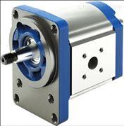 德国REXROTH齿轮泵0510225023现货