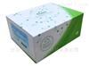 血幼素(HJV)检测试剂盒