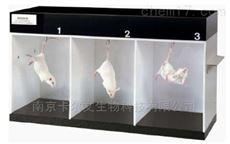 大小鼠悬尾实验系统
