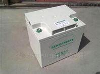 12V24AH德国荷贝克松树胶体蓄电池12V24AH