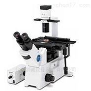 奥林巴斯研究级倒置显微镜